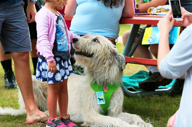Milwaukee Irish Fest Celtic Canines Area